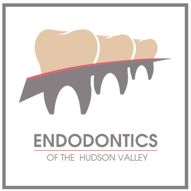 Endodontics of the Hudon Valley